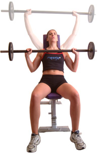 barbell shoulder press muscle exercise