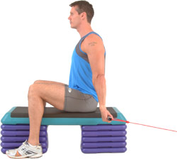 aim to keep your back straight throughout the movement